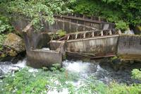 KetchiKan - fish ladders - salmon were swimming upstream.  I
