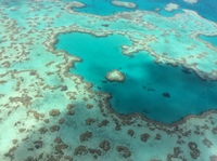 Helicopter ride to the Great Barrier Reef the best way to get there for the view is awesome