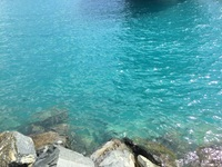 Beautiful water!  Tortola