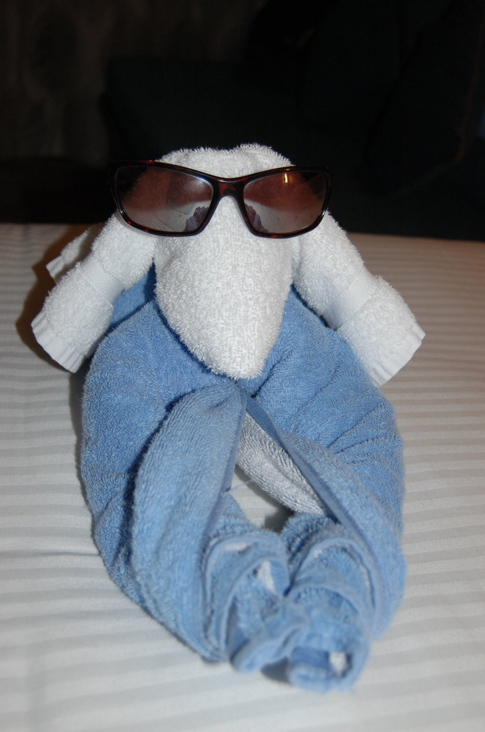 towel animal friends