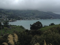 Akaroa, hiking up the Children's Bay trail