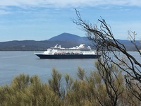 Maasdam Anchored in Eden, New South Wales, as viewed from Haycock Point, Be