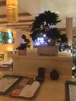 Bonsai - The Sushi restaurant on board $$