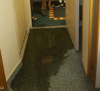 This is one of our 2 rooms that began flooding with sewage for the 2ND time on our 4 day cruise. We were about to leave our room when it happened. I can only imagine what that damage would have been done if we weren