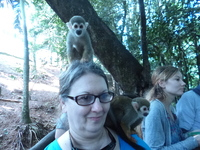 Cute Squirrel Monkey on my head and shoulder!