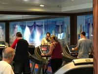 Treadmills at the fitness center