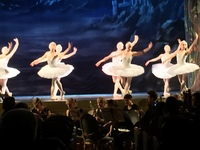 Swan Lake performance. Moscow