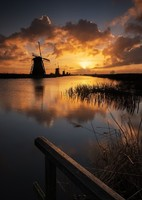 Windmills in Kinderdijk at sunset.  I love windmills.