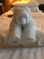 Our towel animals were intermittent