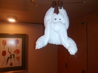 A Towel Monkey in our cabin. The steward made it the night we were in Costa