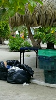 Private island clean up. No pride in presentation with this in sight!