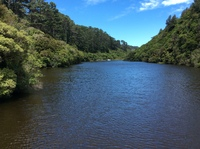 Zealandia—tranquil and beautiful!