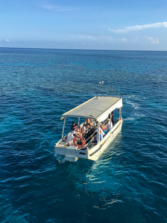 Glass bottomed boat on Escape Reef
