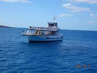 Ferry that takes you to Cococay.