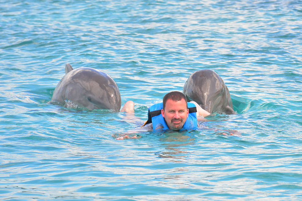 Dolphin Discovery - Royal Swim