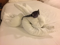 One of the towel sculptures left by our room attendant, Edwin.
