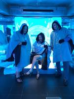 This is the ice bar!