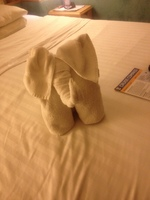 Towel Elephant on our bed