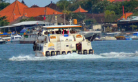 this was just one of the tender boats used to ferry passengers to shore.  D