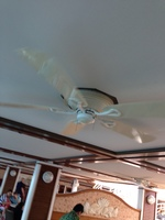 This is the ceiling in the shady/dining area around the pool. Each ceiling