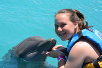 Best Grand Cayman Dolphin Encounter Excursion Amp Cruise Tour Reviews Amp Ratings 2019 Cruise Critic