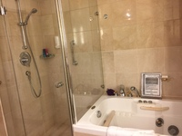 Cabin 1562 jacuzzi tub is not large.  It is the size of a regular tub, with