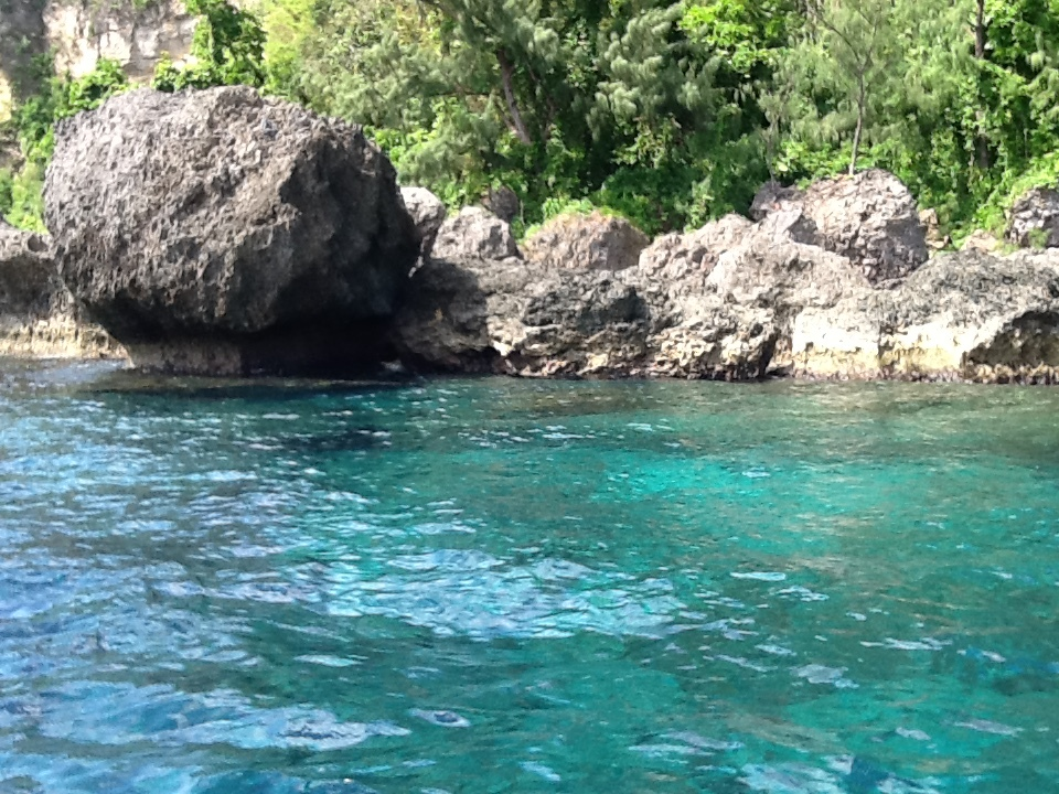 15m deep crystal clear water over a reef at Lelepa Island, with Tropical fi