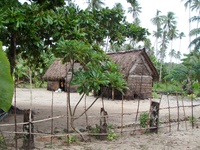 Local houses on Kiriwina island