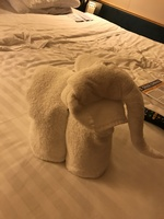 Top towel animal