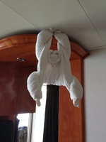 The pic loaded sideways.  It is a towel monkey hanging from the ceiling.