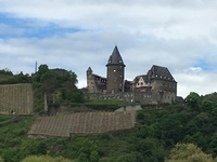 Castle on the Rhein