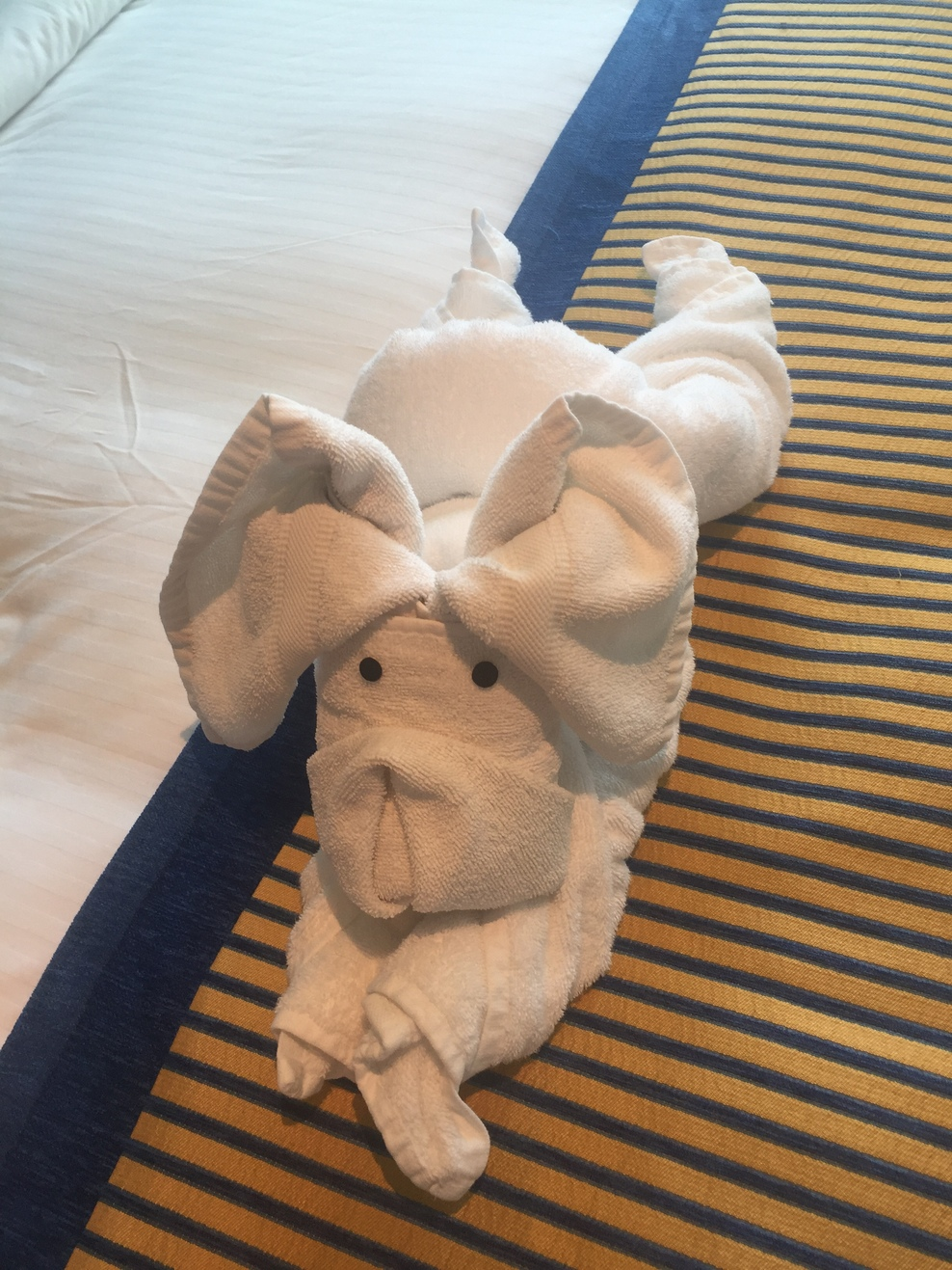 Towel animal in our room