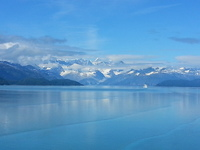 Glacier Bay - the highlight of this and every Alaska Cruise!