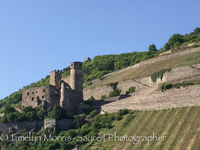 One of the many castles and vineyards we passed.