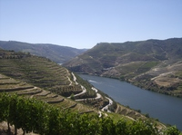 Douro RIver from Sandeman Winery, Pinhao
