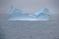An iceberg in Prince Christian Sound