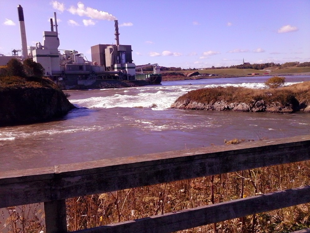 The Reversing Rapids at the Bay of Fundy