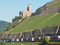 Just one of the castles on the Rhine