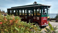 Oli's Trolley - tour of Acadia National Park in Bar Harbor Maine