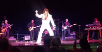 The Forever Elvis show!