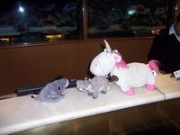 Eeyore and Petunia being greeted by Unicorn who lives at Guest Services