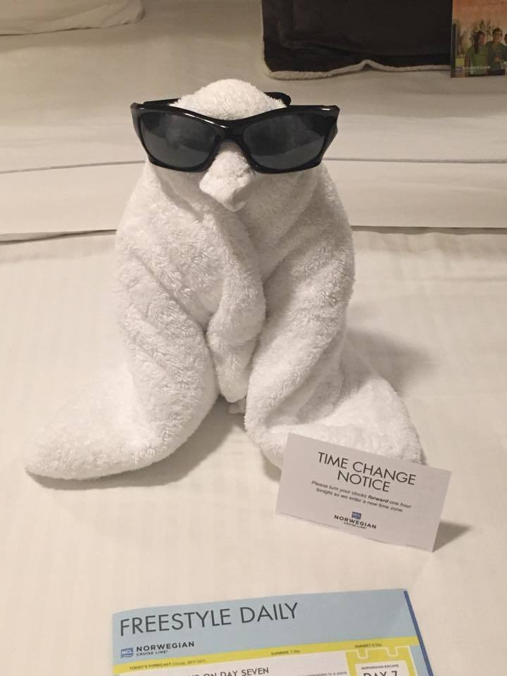 One of the many towel animals left on our bed. This is my favorite.
