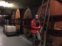 Alsace winery tour