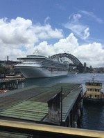 Golden Princess at Circular Quay