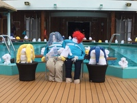 Towel animals came out on day 5.