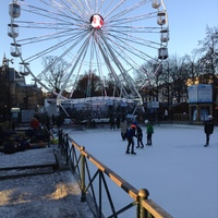 The ice ring in Brugge