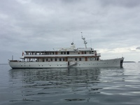 The elegant grace, 45 meters long, 16 guests and 10 crew
