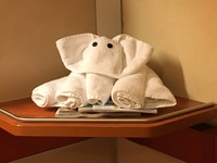 Elephant towel animal from our amazing cabin steward!