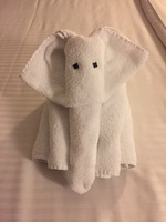 Our lovely cabin towel animals