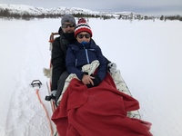 husky sled ride in Kirkenes